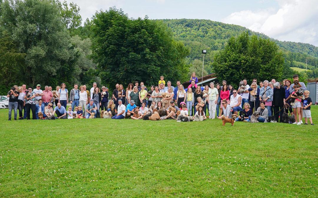Fortuna's JOY Havaneser-Treffen 13. Juli 2019